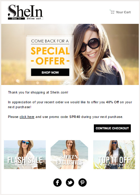 SWIPE Ecommerce Email Templates Real Examples - Special offer email template