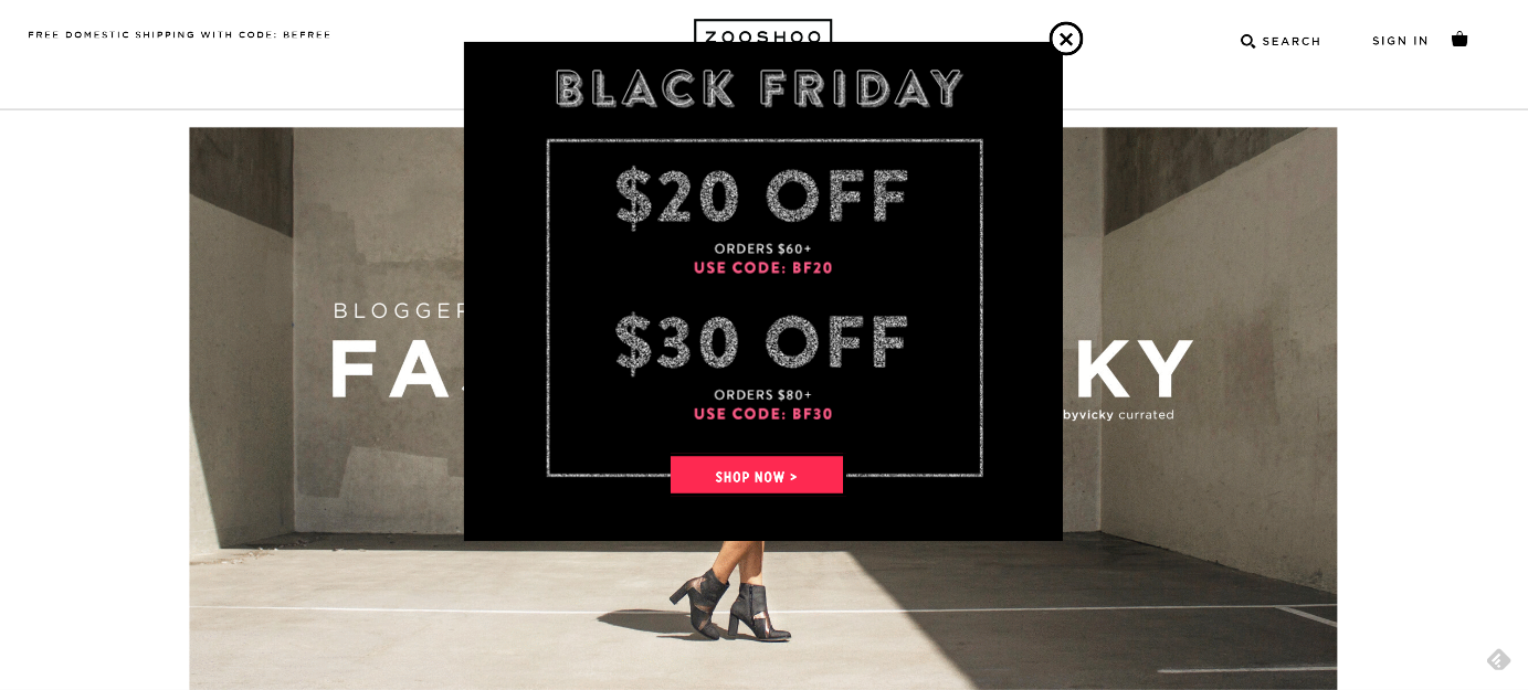 black friday campaign
