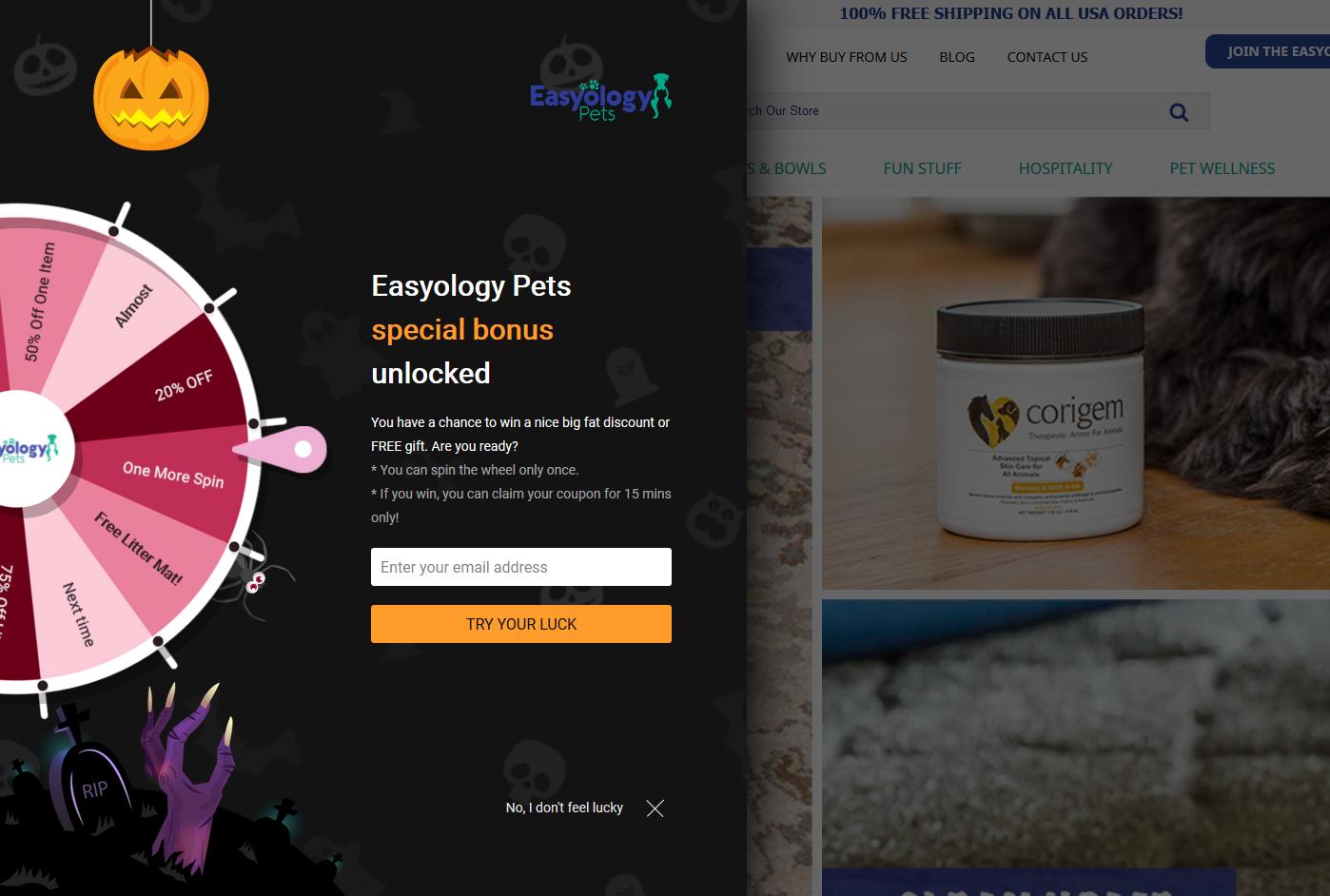 20 Popup Examples for Sales Promotion - Easyologypets