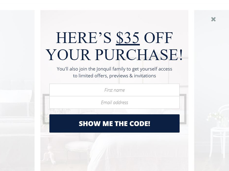 20 Popup Examples for Sales Promotion - Jonquil