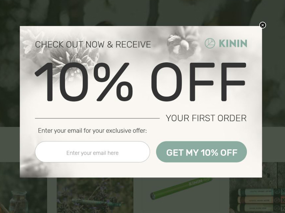 20 Popup Examples for Sales Promotion - Kinin
