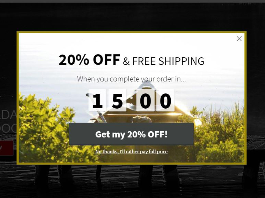 20 Popup Examples for Sales Promotion - Prospectorknives