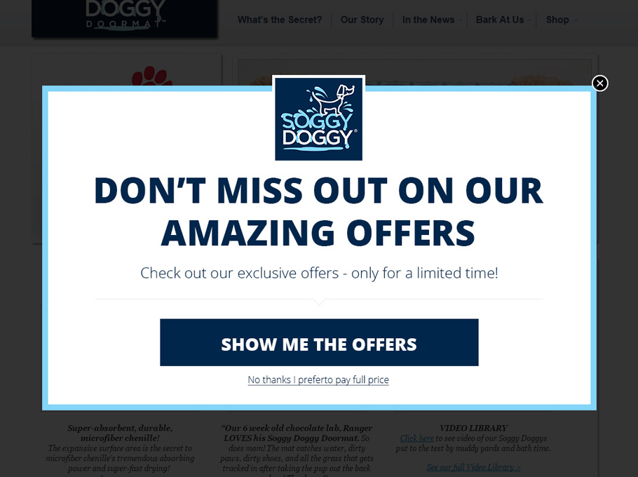 20 Popup Examples for Sales Promotion - Soggydoggy